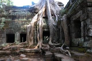Boek een hotel in Cambodja