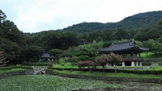 Boek een hotel in Zuid-Korea